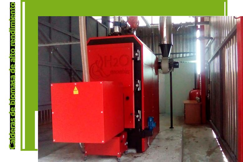 biomassa-es